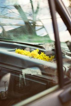 Jennilee Marigomen - BOOOOOOOM! - CREATE * INSPIRE * COMMUNITY * ART * DESIGN * MUSIC * FILM * PHOTO * PROJECTS #jennilee #photography #flowers #marigomen