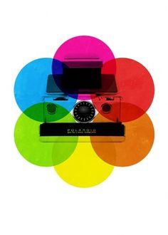 Sara Lindholm #camera #polaroid