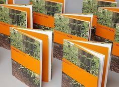 FFFFOUND! | as_project_item_image_12686555418617945205.jpg 768×560 pixels #photo #orange #over #cover #band #brochure