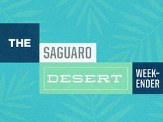 coachella event branding #springs #palm #coachella #event #saguaro #mid #century #desert