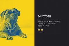 Free Duotone Photoshop Action