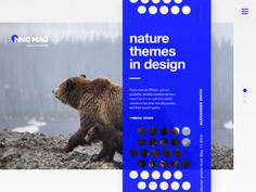 Nature, magazine, website