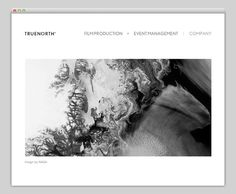 Truenorth #website #layout #design #web