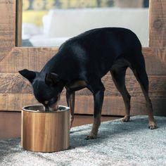 Vela II Pet Bowls #tech #flow #gadget #gift #ideas #cool