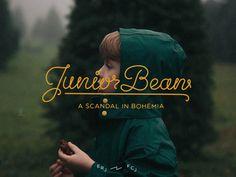 JuniorBean #script #typography