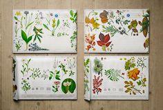 Posten #flower #illustration #envelope
