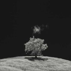 Infrared Silence by Nathan Wirth #inspiration #photography #infrared
