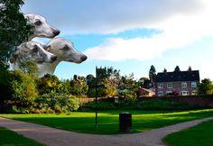 Greyhounds in Ellesmere by Maria Umiewska feat.Nadia Konina