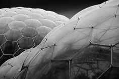 OTAKU GANGSTA #project #bubble #geometric #eco #eden