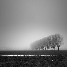 Pierre Pellegrini #white #black #landscape #photography #and