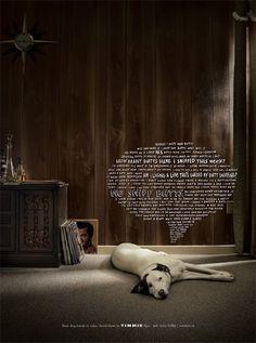 Timmie's Dog Spa – Fubiz™ #handwritten #ad #dog