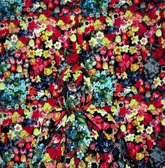 Project with Sarah May : Annie Collinge #pattern #photograph #flowers