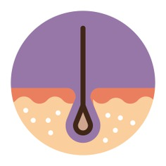 See more icon inspiration related to skin, hair, dermathology, medical and epidermis on Flaticon.