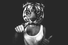 photo, tiger, woman