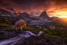 Nature Landscape Photography by Ryan Dyar