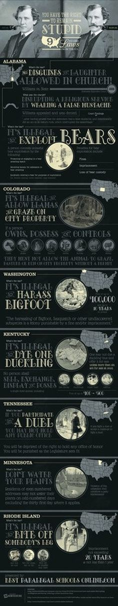 9 Bizarre Laws From the U.S. #infographic #design #graphic