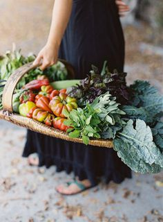 farmtotable_5