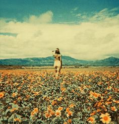 Neil Krug #field #sky #neil #krug #photography