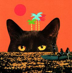 Catisland by Jessica Das #illustration #photography #collage