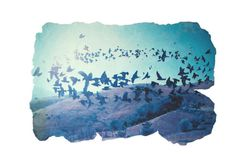 starlings #blue #starlings #magic #realism