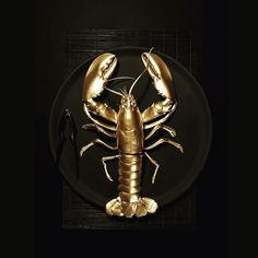 Lobster d'Or #golden #lobster