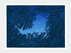Snowblinded™ - Canopy #cozzi #print #camping #denver #colorado #stars #anthony #snowblinded #canopy