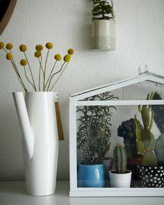 Home furnishing with plants @ Igor's on www.happyinteriorblog.com