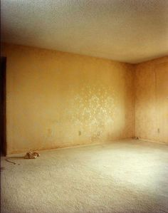 Todd Hido: Excerpts from Silver Meadows [SIGNED] #hido #todd #home #photography #abandon