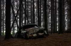 Chatillon (16) | Flickr - Photo Sharing! #forest #car #decay #rust