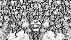 teaser baroque \\Angelique Delabre\\ 2012