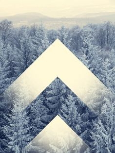 bakmaya değer. #design #art #white #landscape #trees #woods #arrows #spines