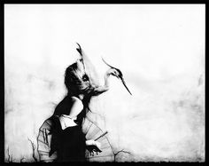 "Preview: Sail's ""Dead Language"" at Roq La Rue | Hi Fructose Magazine #girl #bird"
