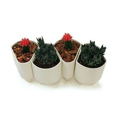 Fab.com   Elliot Modular Planter 4 Pack #furniture #design #plants #home