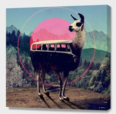 """""""Llama"""" by Ali Gulec (Turkey) #llama #van #illustration #vw"""