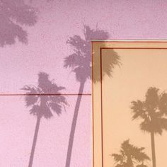 LA shadow play (at e l i s e m e s n e r . c o m) #pantones #palms