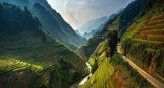 Green #river #green