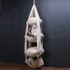 Cat's Trapeze Hammock #tech #flow #gadget #gift #ideas #cool