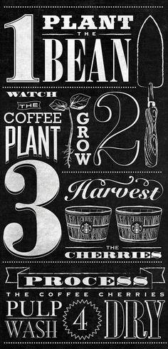 Starbucks Bean to Beverage Chalk Board Mural by Jaymie McAmmond #typography
