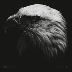 Illustration for t-shirt #tshirt #layout #illustration #eagle #america #patriotic #vintage