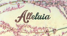 flowers, alleluia, easter, grunge, cherries