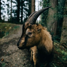 #neverstopexploring: Adventure Landscape Photography by Forrest Winants Smith