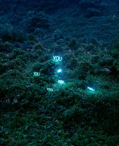 http://www.thisiscolossal.com/wp-content/uploads/2012/05/jung-6.jpg #font #installation #you #photo #typography #environment #light #neon