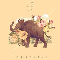 "From the ""Words of Wisdom Project&"". See more at:Â www.facebook.com/pedrotofo #floral #elephant #illustration #nature #unnatural #torres #collage #king"