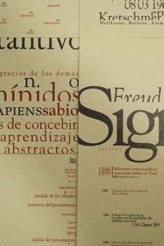 Diego Pinzon, Industrial Designer from Buenos Aires CF, Argentina #diego #pinzon #dictionary #layout #typo #typography
