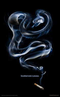 Smoke is Poisonous #cigarette #smoke #snake