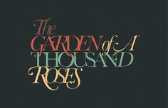 Random Types 2, POGO | art & design boutique #typography