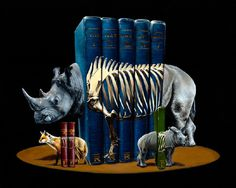 Jacub Gagnon and rhinos and fox in animal art #surrealism #realism #painting #paintings #art #animal