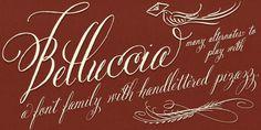 Belluccia™ Webfont #fonts #typography