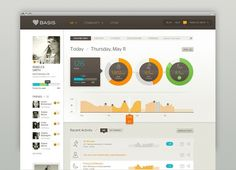 Basis Dashboard #design #simple #colorful #data #visualization #web