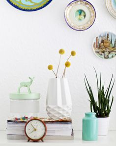 Animals on jars and plates on wall